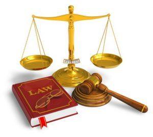 Как наследуют наследники первой очереди по закону