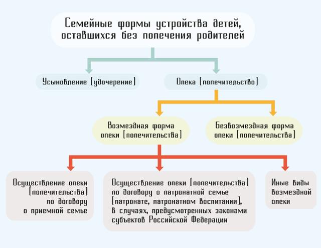 Чем отличается опека от усыновления в РФ 2021 году