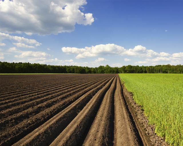 Наследование земельного пая в РФ: налог и оформление 2021 год