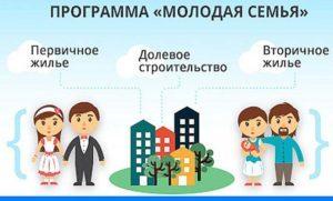 Государственная программа
