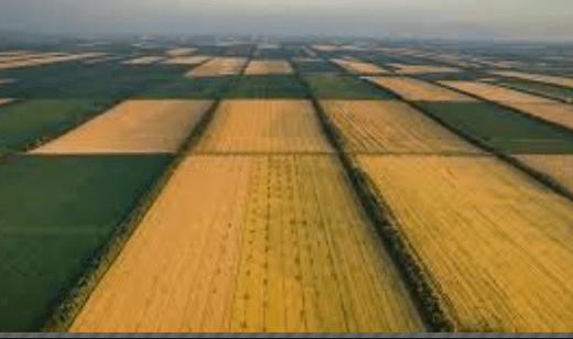 Как происходит наследование земельного участка