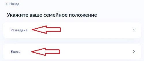 Особенности условий подачи заявления в ЗАГС через МФЦ